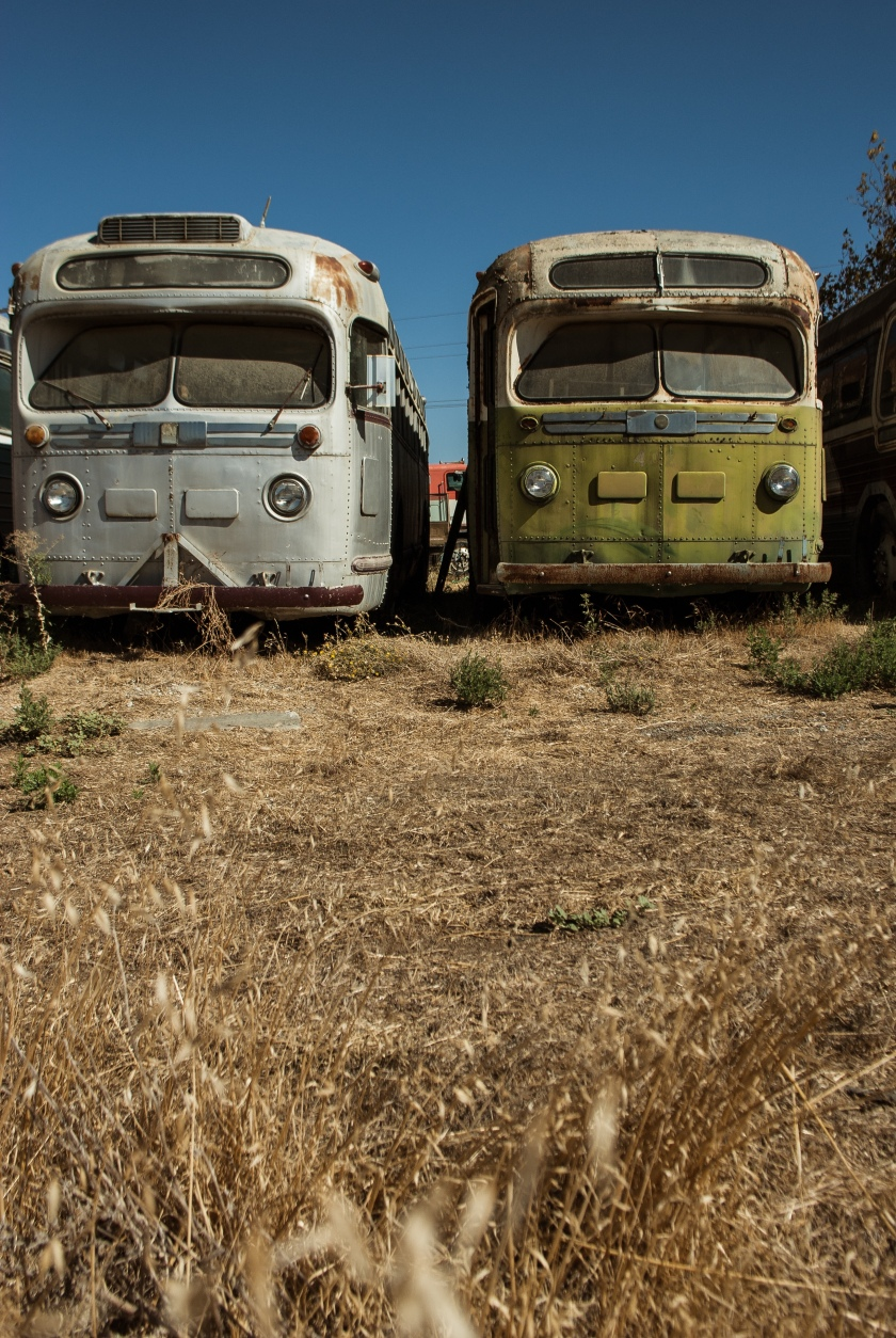 Old_Buses_#9
